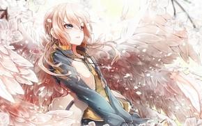 Обои девушка, аниме, сакура, арт, ангел. крылья. весна