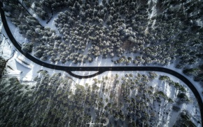 Обои зима, дорога, лес, свет, природа, тени, вид сверху