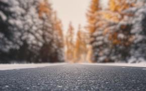 Картинка дорога, фон, цвет