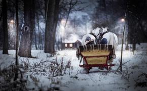 Картинка зима, кони, мальчик, сани