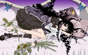 Картинка девушка, цветы, аниме, арт, xxxHolic