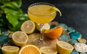Картинка бокал, апельсин, лёд, сок, цитрус, напиток