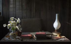Картинка осень, цветы, уют, дерево, настроение, спокойствие, книги, лампа, ромашки, пыль, умиротворение, столь