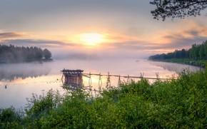 Картинка туман, утро, речка