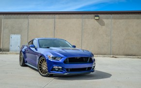 Картинка mustang, wheels, ford, blue niche