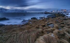 Картинка Норвегия, Norway, Lofoten