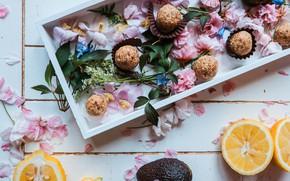 Картинка цветы, коробка, лимон, шоколад, конфеты, wood, dessert