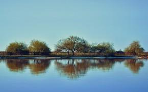Картинка деревья, отражение, река, неба