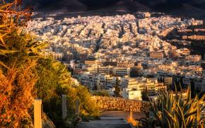 Обои осень, панорама, дома, Athens, вид сверху, Греция, солнце