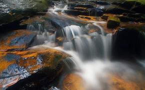 Картинка вода, поток, Река
