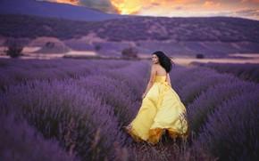 Картинка поле, девушка, радость, платье, лаванда
