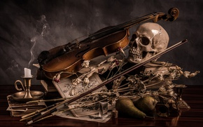 Картинка цветы, скрипка, череп, свеча, натюрморт, груши