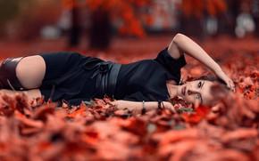 Картинка осень, листья, девушка, парк, платье, лежит, красивая, в черном, боке, Alexandra, на земле, Andrea Carretta