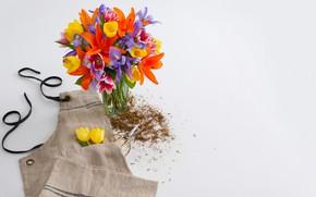 Картинка цветы, букет, colors, ваза, flowers, декор