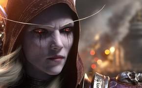 Картинка Битва за Азерот, Silvanas Windrunner, World Of Warcraft