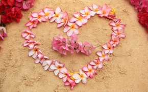Картинка песок, пляж, цветы, сердце, love, beach, heart, pink, flowers, romantic, sand, плюмерия, plumeria, floral