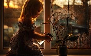 Картинка цветок, окно, девочка, полив