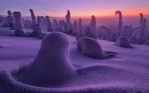Картинка зима, лес, снег, природа, дымка
