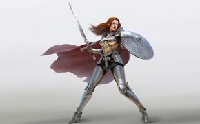 Картинка девушка, волосы, доспехи, воин, Меч, щит