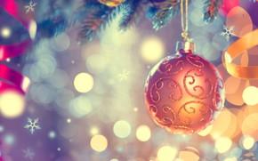 Картинка игрушка, новый год, шар, ель