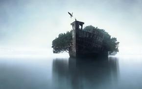Картинка деревья, птицы, корабль, горизонт, арт