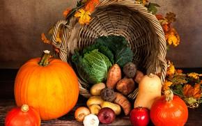 Обои лук, осень, корзина, чеснок, желтые, тыква, листья, капуста, гранат, картофель, овощи, стол, морковь