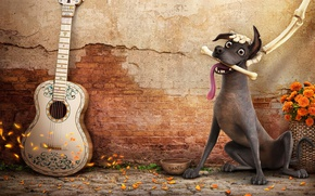 Обои Coco, animated film, dog, happy, animated movie, Mexico, bones