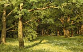 Обои природа, пейзаж, Лесная Поляна, Иван Шишкин, картина