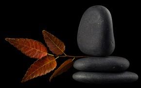 Картинка отражение, камни, листок
