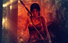 Картинка Tomb Raider, Лара Крофт, Lara Coft, Crystal Dynamics, Томб Райдер