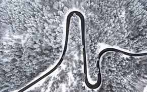Картинка зима, дорога, лес, снег, вид сверху
