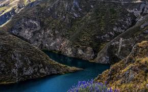 Картинка цветы, река, камни, скалы, Перу, Huancaya