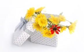 Обои цветы, коробка, подарок, букет