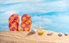 Картинка песок, море, пляж, лето, небо, ракушки, summer, beach, sea, sand, сланцы, starfish, seashells
