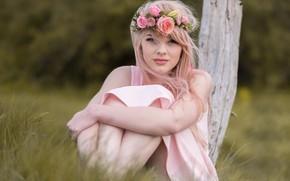 Картинка лето, трава, девушка, цветы, природа, столб, платье, блондинка, венок, Vitek Petras