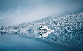 Картинка зима, лес, небо, снег, озеро, дом, отражение