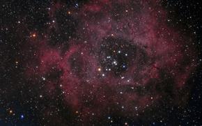 Картинка Единорог, в созвездии, Туманность Розетка