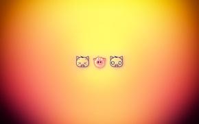 Картинка cat, funny, dog, pig