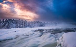 Обои лес, река, небо, Sweden, пороги, Storforsen Rapids, Норрботтен, Река Питеэльвен, Norrbotten County, Pite River, Швеция, ...