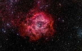 Обои Rosette Nebula, космос, пространство, звезды, красота