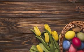 Картинка цветы, праздник, яйца, пасха, гнездо, тюльпаны