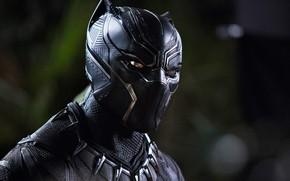 Обои cinema, film, panther, Black Panther, Wakandak, uniform, mask, T'challa, movie, king, hero, Chadwick Boseman, yuusha, ...