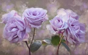 Обои розы, лепестки, живопись, цветы