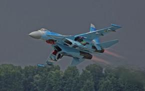 Обои лес, Soukhoï Su-27 Flanker, боевой самолёт, взлёт