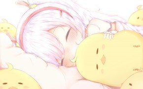 Картинка спит, девочка, цыплёнок, Azur Lane