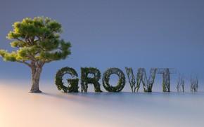Картинка дерево, closeup, growth