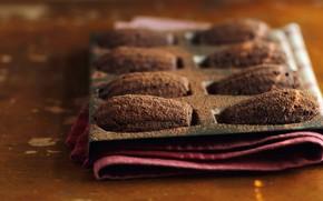 Картинка десерт, выпечка, какао, французское, madeleines, Мадлен, бисквитное, морские гребешки