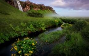 Картинка пейзаж, цветы, природа, река, гора