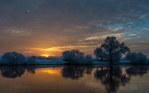Картинка деревья, закат, река, Allerland