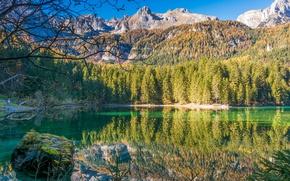 Картинка лес, горы, озеро, Италия, Trentino Alto Adige, Lago di Tovel